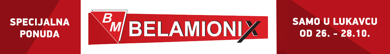 Belamionix