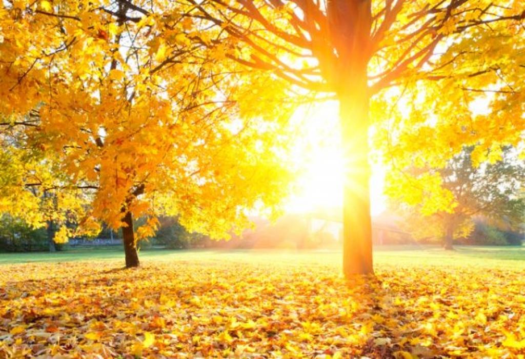 U BiH i danas sunce – uživajte u lijepom vremenu: Meteorolozi objavili kad stiže kiša